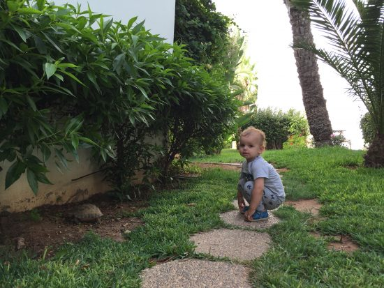 royal-decameron-tafoukt-agadir-jardin