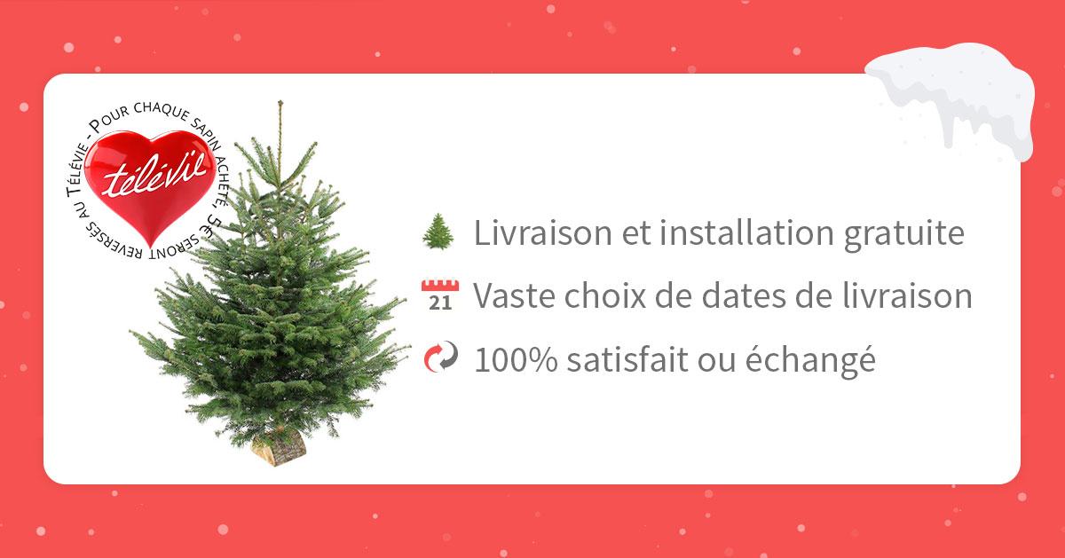livraison sapin de Noël Bruxelles